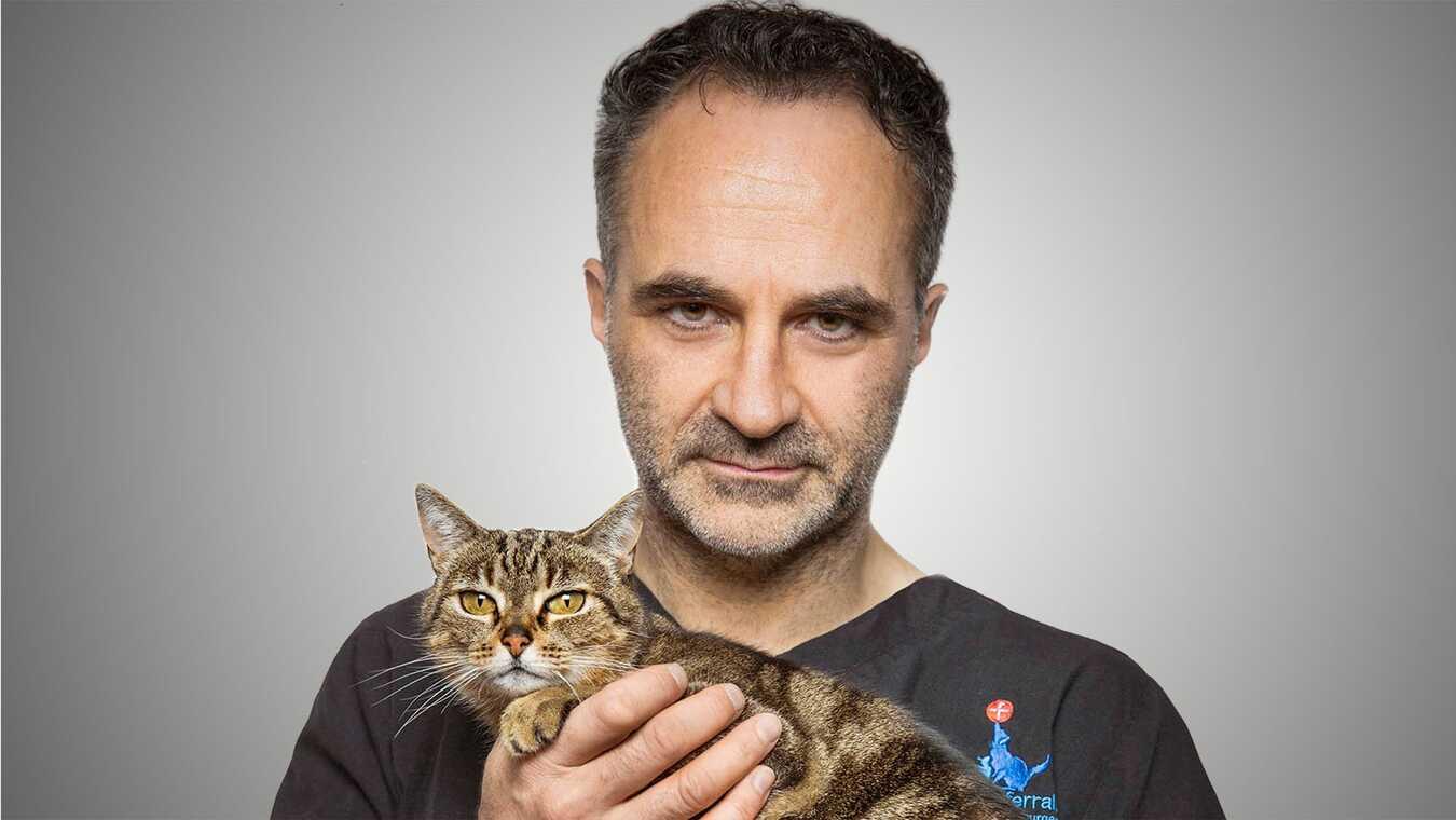 Världens bästa veterinär