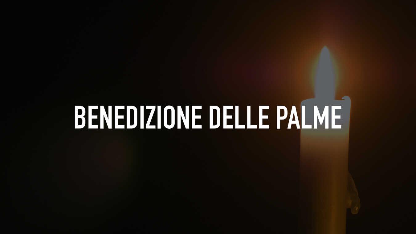 Benedizione delle Palme