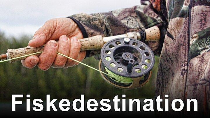 Fiskedestination