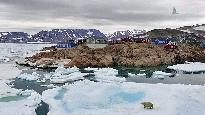 Att leva på Grönland - www.tv.nu