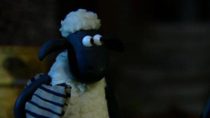 Snarkande får