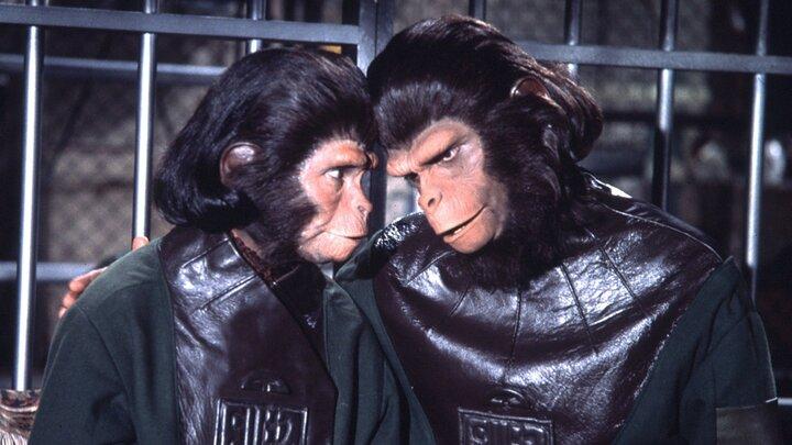 Flykten från apornas planet