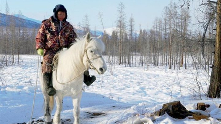 Ryssland och hästarna