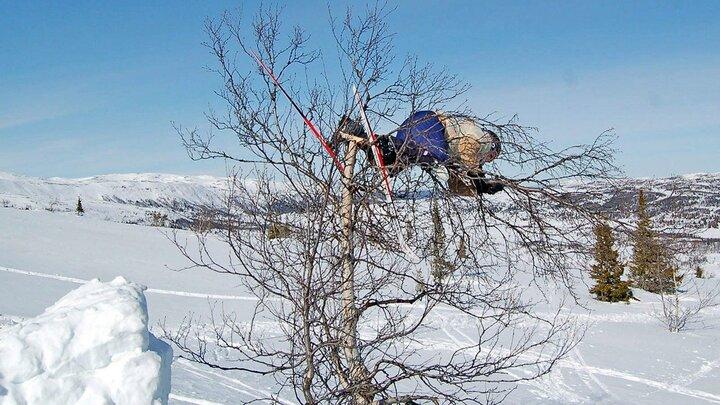 Folkets vinterfilm