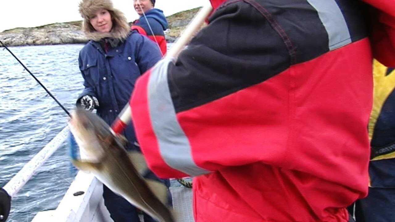 Fiskeskolan