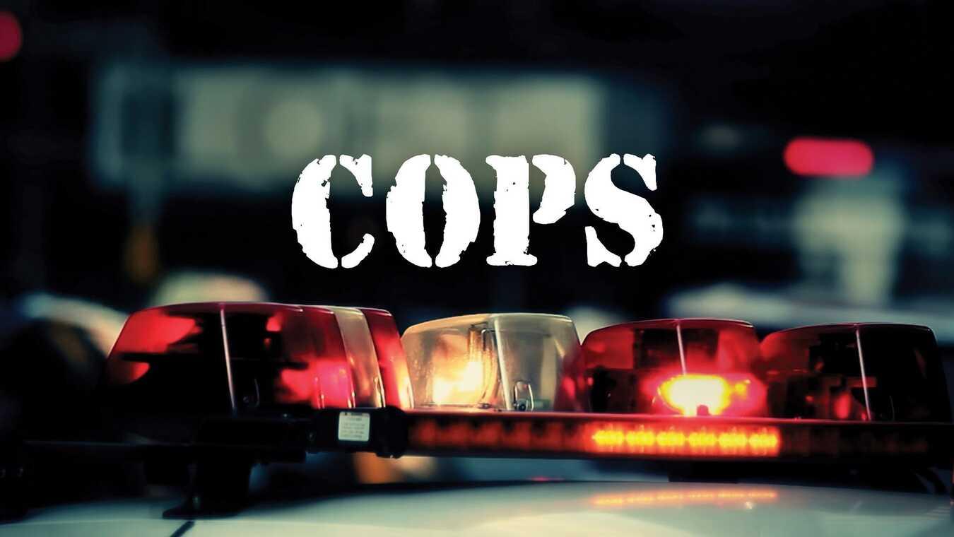 Cops på TV6 söndag 03 35 ba05a5e1c5194