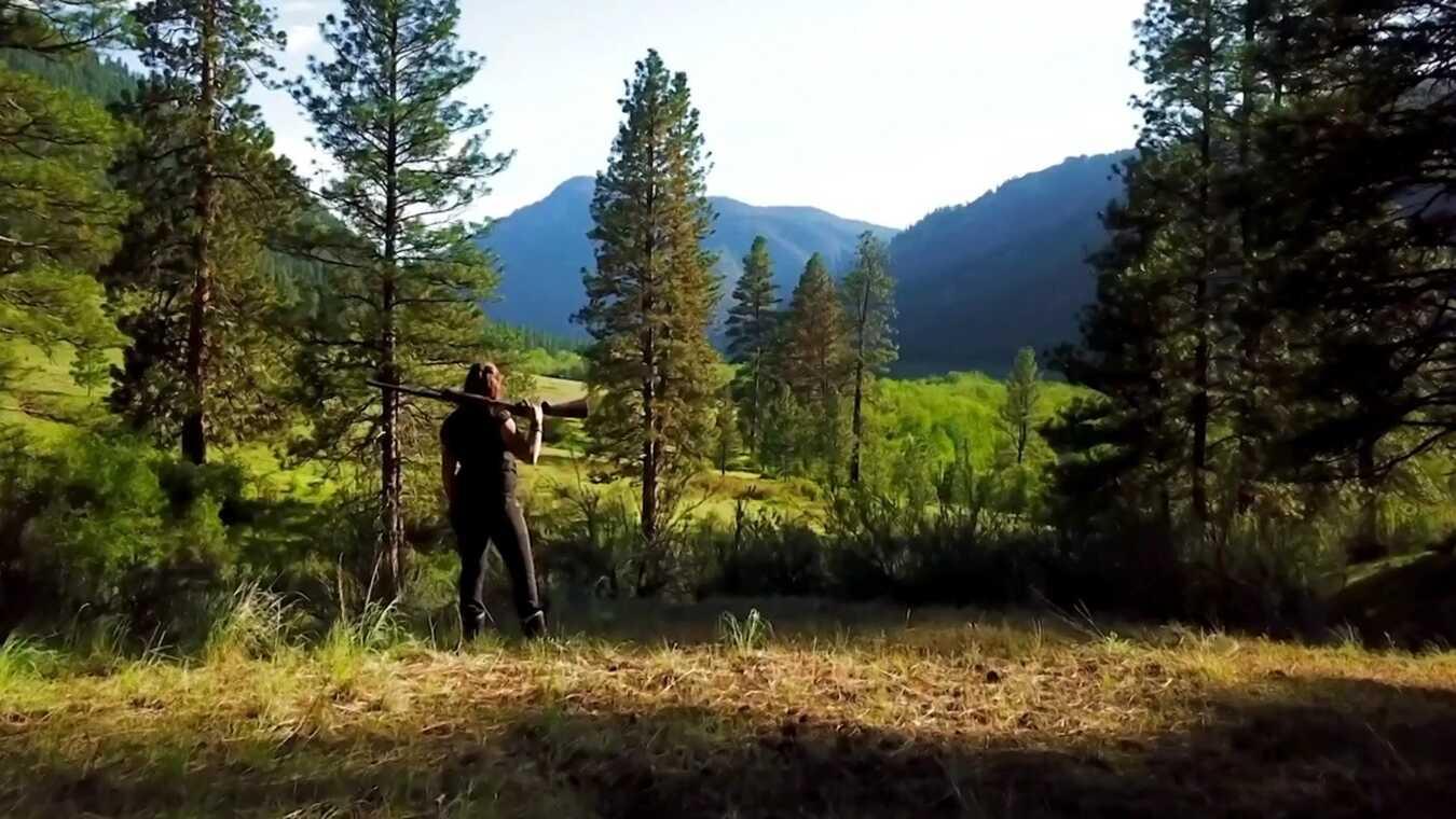 Livet i Alaskas vildmark