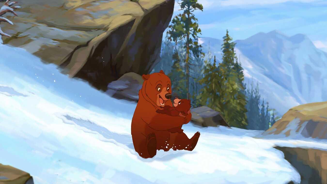 Bärenbrüder 2 Stream