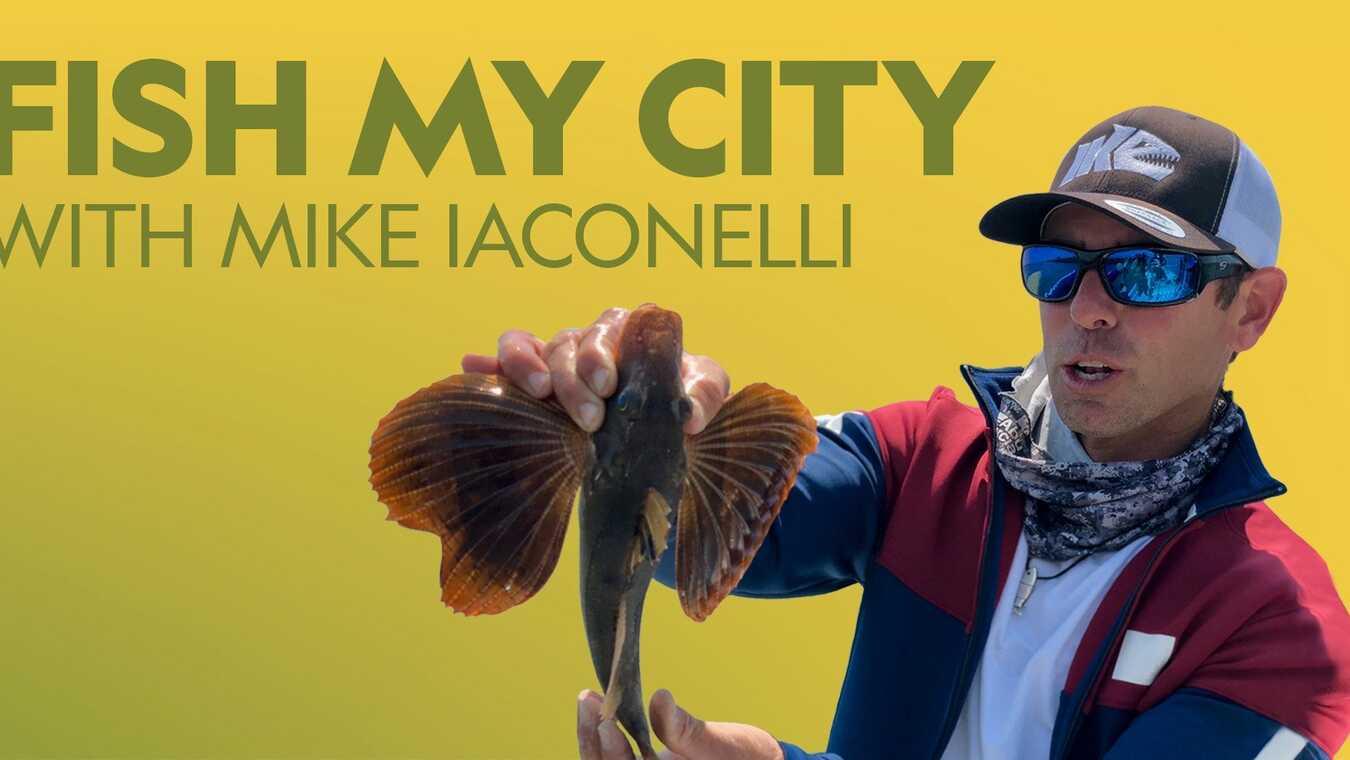 Stadsfiske med Mike Iaconelli