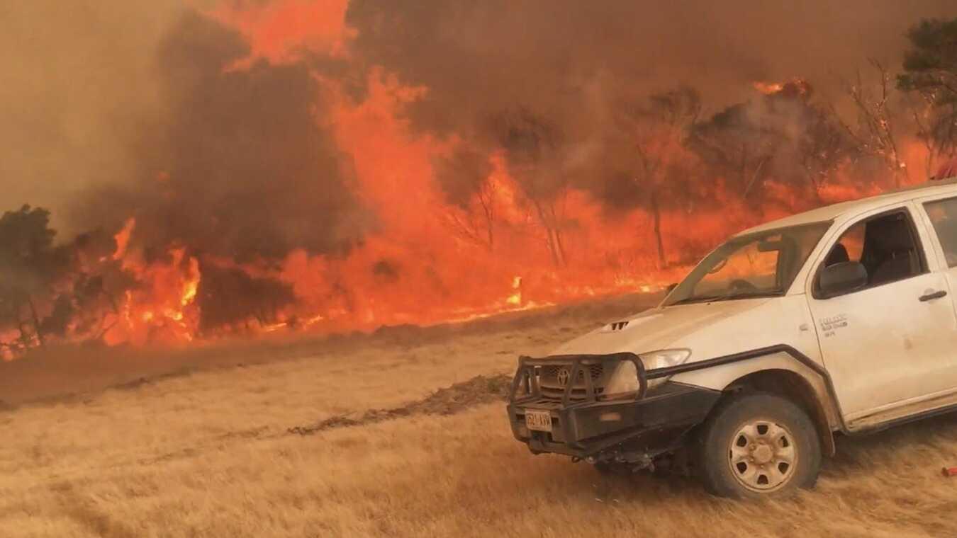 Australien brinner: klimatkrisens offer